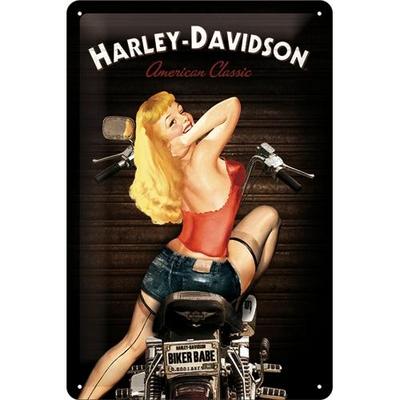 22214 Kilpi 20x30 Harley-Davidson Biker Babe