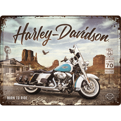 23291 Kilpi 30x40 Harley Davidson - Route 66 Road King Classic