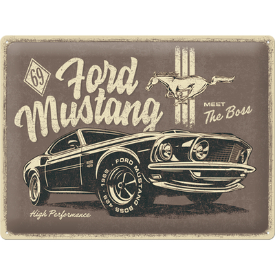 23311 Kilpi 30x40 Ford Mustang - The Boss