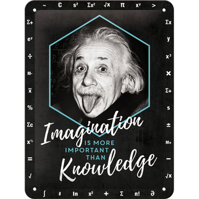 26247 Kilpi 15x20 Einstein - Imagination & Knowledge