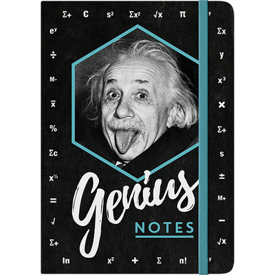 54008 Muistikirja Einstein - Genius Notes